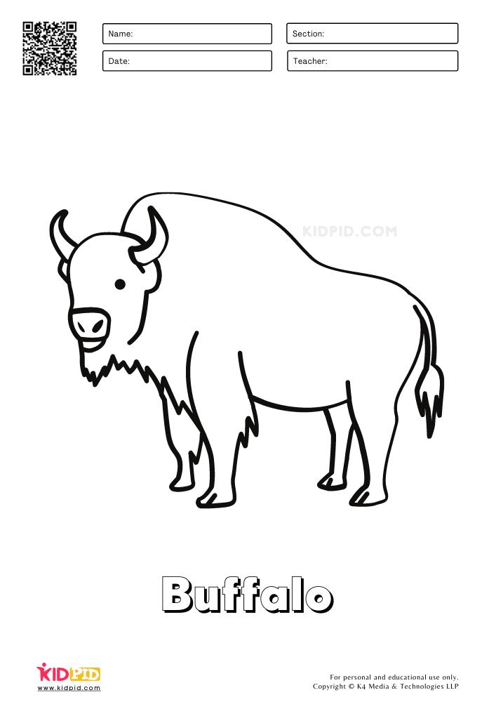 Farm Animal Coloring Printable Worksheets Buffalo