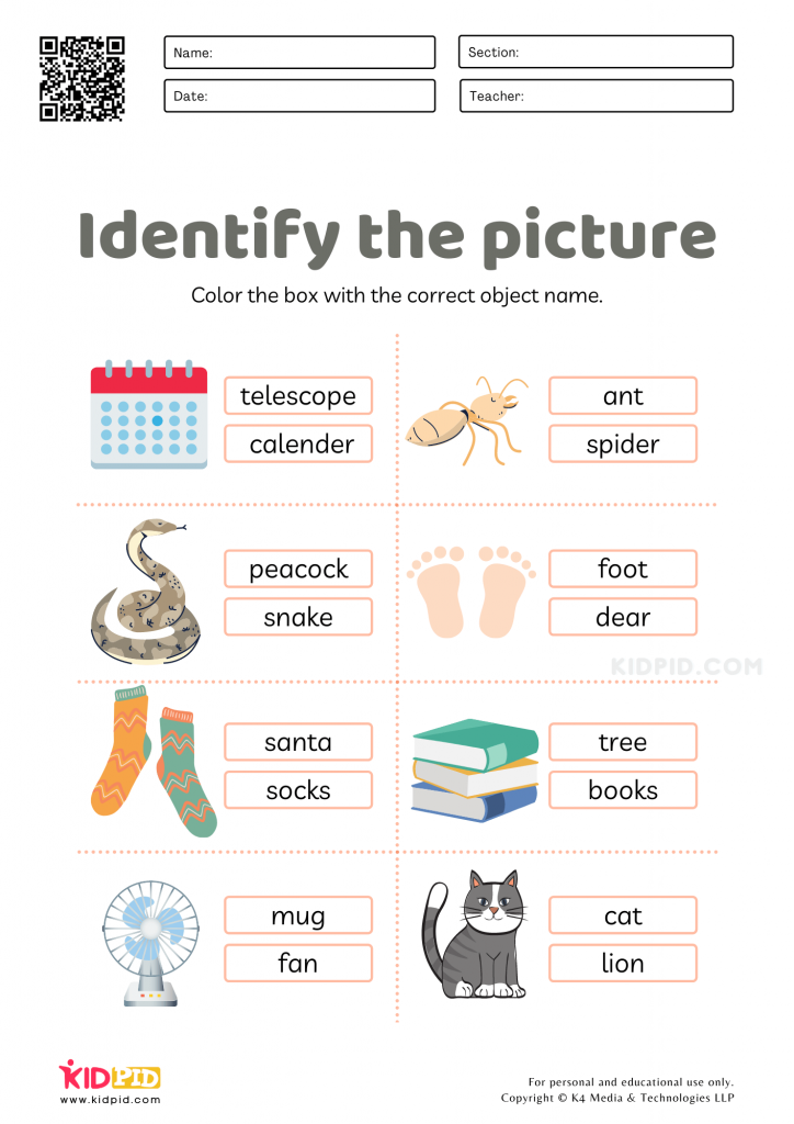 A fun workshest for identifying objects