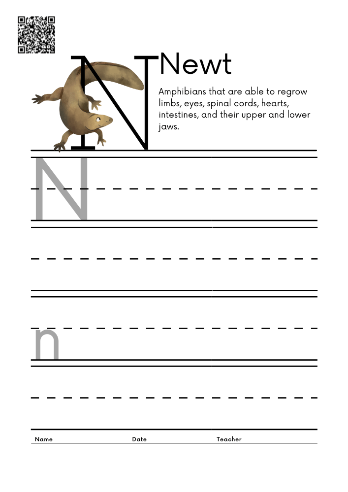 WORKSHEET 14 Animal Alphabet Letter Practice Free Printable Worksheets