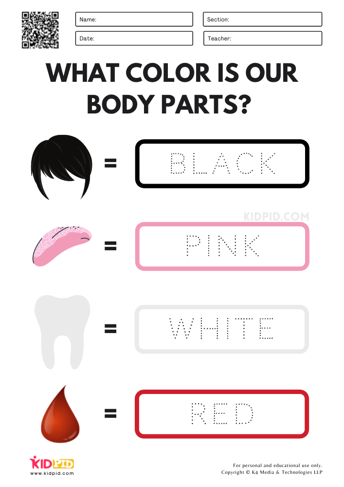 Identify Colors & Tracing Activity Printable Worksheets