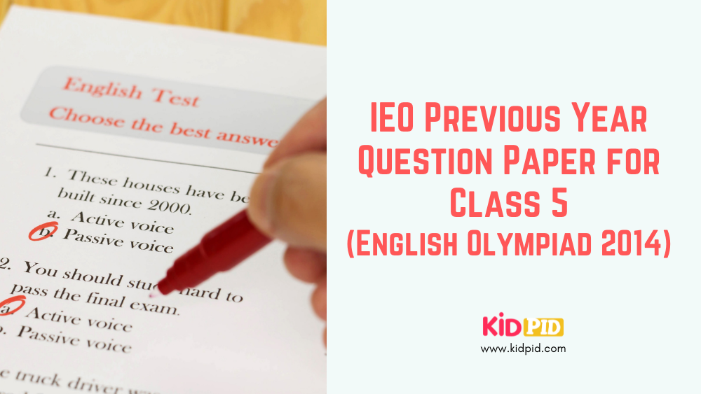ieo-previous-year-question-paper-for-class-5-english-olympiad-2014-set-b